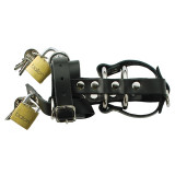 Spartacus Total Chastity Leather Chastity Device