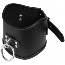 Strict Leather Locking Posture Collar product image 1